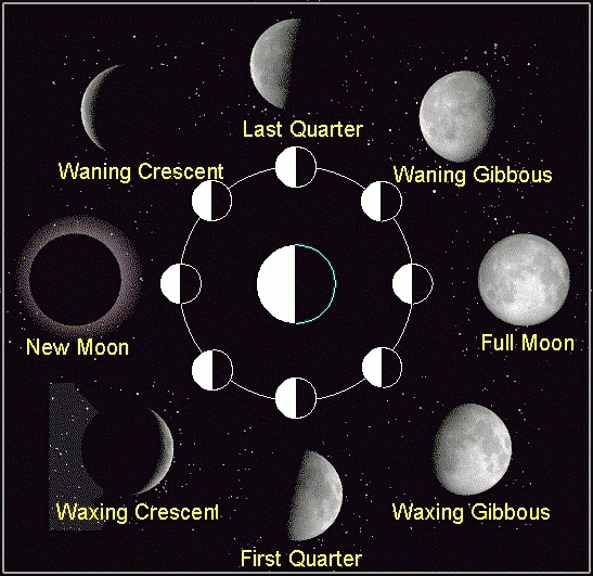 Moon Phases | Sacred Wicca